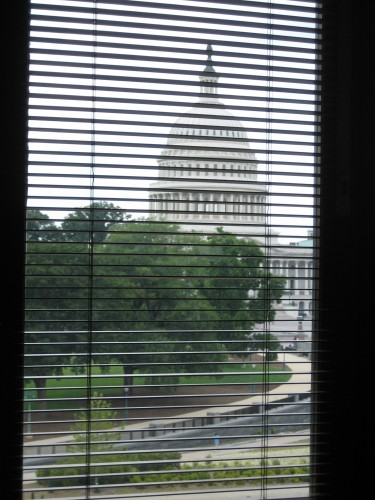 The capitol from the national gallery