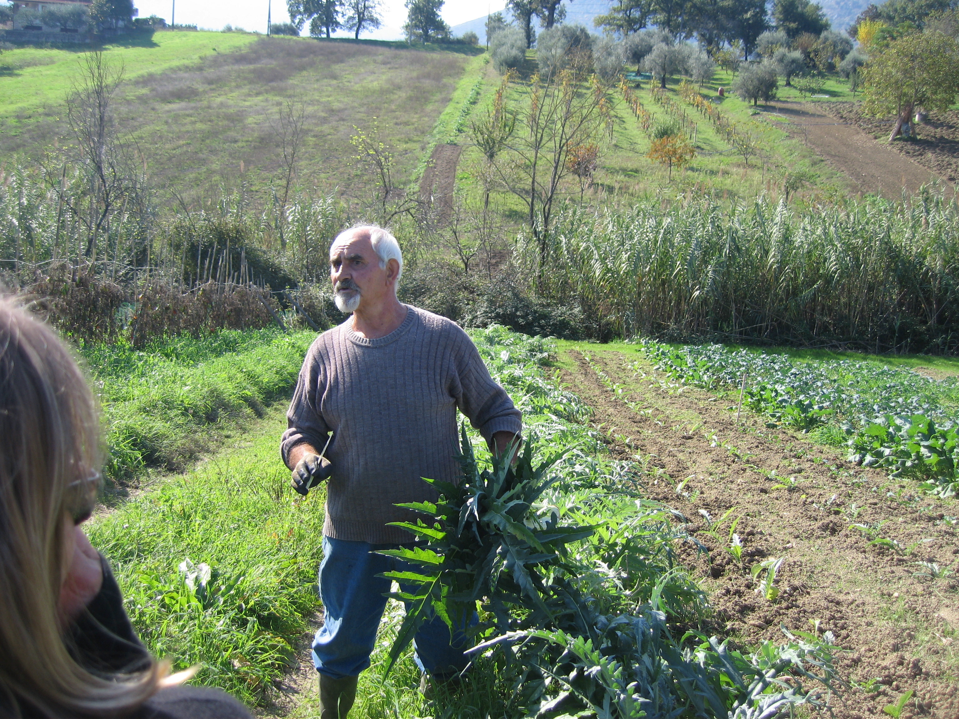 Giovanni showing a cardoon who's boss