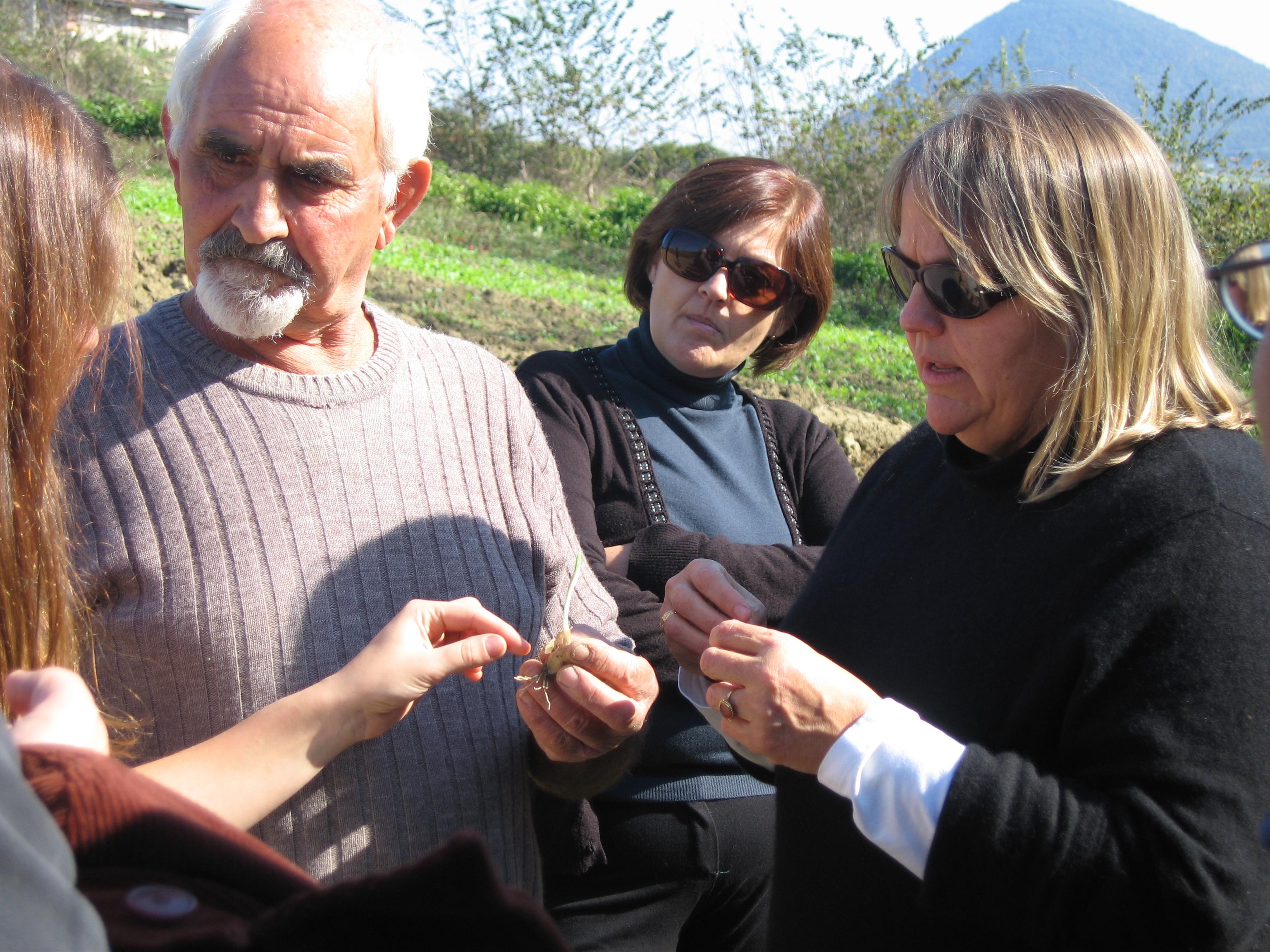 Giovanni explaining why bugs like certain plants (i think)